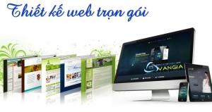 Dịch vụ thiết kế website trọn gói, giá rẻ